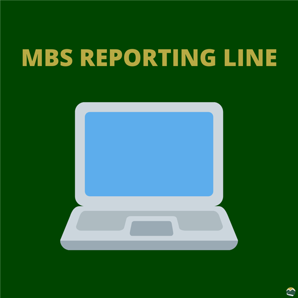 MBS Reporting Line Graphic